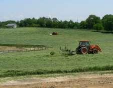 cutting-hay-2008